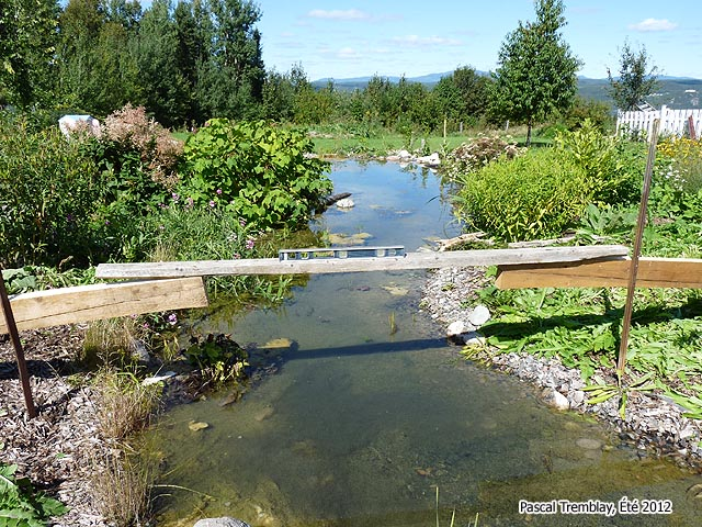 How To Build A Arched Pond Bridge   Wooden Japanese Pond Bridge   Buy Pond  Bridge
