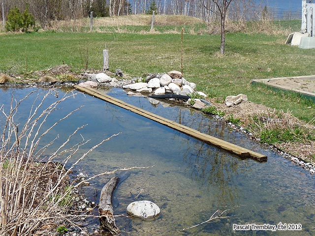 Japanese bridge japanese pond bridge building plan guide How to build a japanese garden