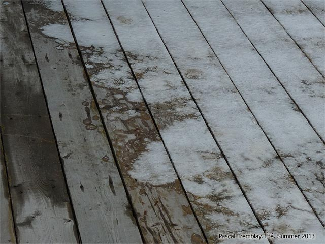 How To Clean Your Deck Cleaning Deck Before Staining