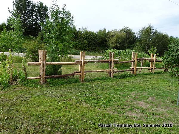 Split Rail Fence Design Amp Ideas How To Build Cheap Split
