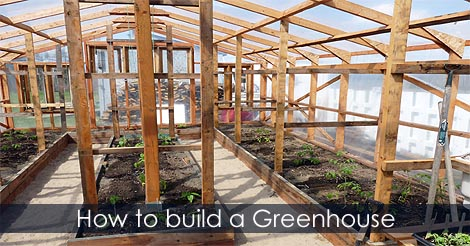 Build Wood Greenhouse Usa Plastic And Polycarbonate