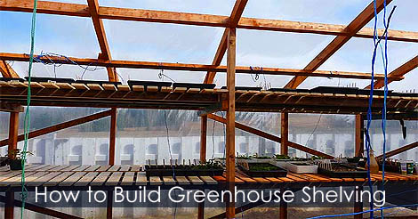 How to make greenhouse shelving shelves benches tables Factors to consider before building a conservatory