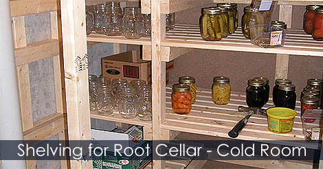 thread root cellar in basement building steps