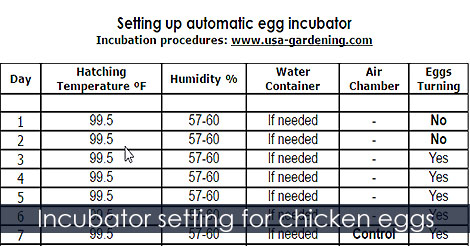 Incubator Setting For En Eggs Hatching Chart Incubation Calendar Egg Hatch