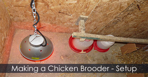 homemade chicken incubator instructions