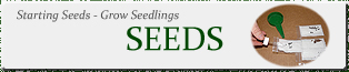 USA Seeds - Improving germination tips - Starting seeds indoors