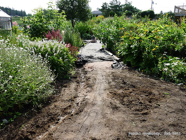 Stone Dust Path - DIY Path Edging with Logs Design Ideas
