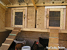 Build Hen House - Chicken coop DIY Ideas