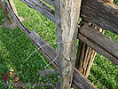 Build Cedar Rail Fence - Plan Guide Split rail fence