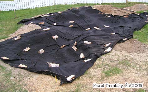 Pond liner installation tips epdm and pond underlay for Diy pond liner ideas