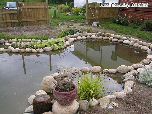 Pond landscaping design ideas build usa water garden for Garden pond materials